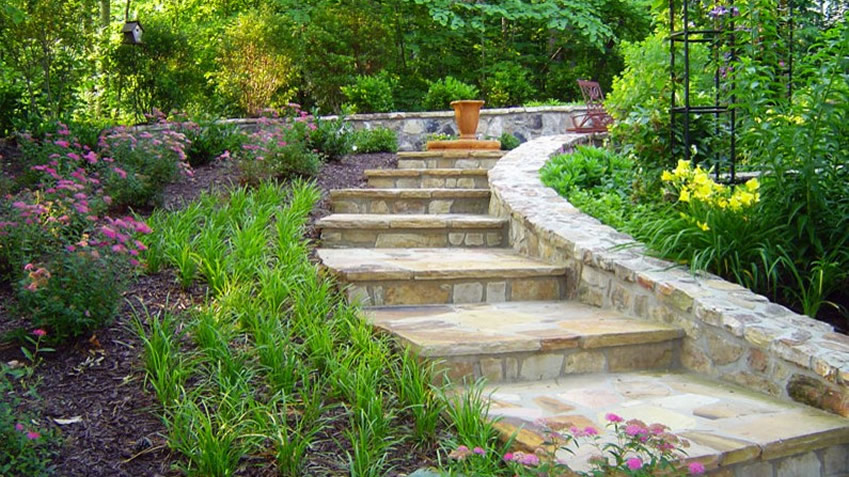 How to Design a Low-Water Garden