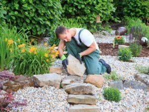 Landscape Designer, Tree Removal Service