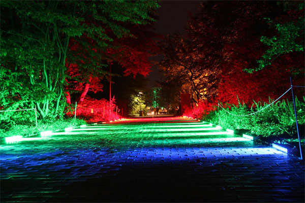 Illumination to Enhance Landscapes